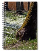 Anemone Forest Spiral Notebook