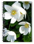Anemones Spiral Notebook