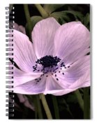 Anemore In Pink Spiral Notebook