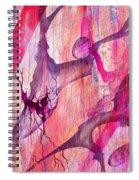 Aneurysm Spiral Notebook
