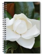 Angel In The Magnolia Spiral Notebook