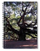 Angel Oak II Spiral Notebook