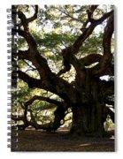 Angel Oak In November Spiral Notebook