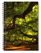 Angel Oak Limbs 2 Spiral Notebook