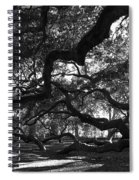 Angel Oak Limbs Bw Spiral Notebook