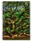 Angel Oak Morning Shadows Charleston South Carolina Spiral Notebook