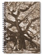Angel Oak Sepia Spiral Notebook