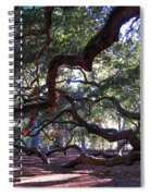 Angel Oak Side View Spiral Notebook