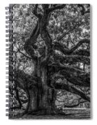 Angel Oak Tree Americana Spiral Notebook