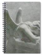Angel Of Grief Spiral Notebook