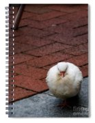 Angel Of The City Spiral Notebook