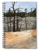 Angel Terrace At Mammoth Hot Springs Yellowstone National Park Spiral Notebook