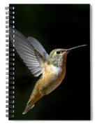 Angelic Hummer Spiral Notebook