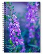 Angelonia Serena Spiral Notebook