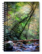 Angels At The River Spiral Notebook