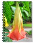 Angel's Trumpet 2 Spiral Notebook