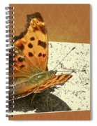 Anglewing Butterfly Spiral Notebook