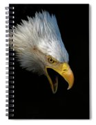 Angry Bald Eagle Portrait Spiral Notebook