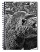 Angry Bear Black And White Spiral Notebook