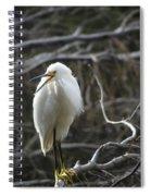 Angry Bird Spiral Notebook