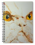 Angry Cat. Spiral Notebook
