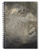 Anguish Spiral Notebook