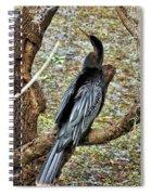 Anhinga 2 Spiral Notebook