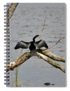 Anhinga And Alligator Spiral Notebook