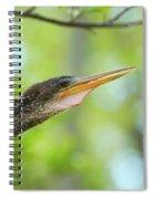 Anhinga Close-up Spiral Notebook