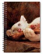 Animal - Cat - My Chew Toy Spiral Notebook
