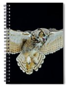 Animal - Bird - Great Horned Owl Wings Spread Spiral Notebook