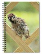 Animal Children Spiral Notebook