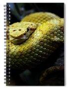 Animals 39 Spiral Notebook