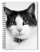 Animals 92 Spiral Notebook