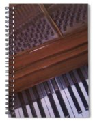 Anita's Piano 1 Spiral Notebook