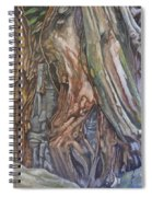 Ankor Temple Trees  Spiral Notebook