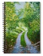 Annecy Forest Afternoon Spiral Notebook