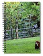 Annie In Her Yard Spiral Notebook