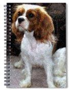 Annie Spiral Notebook
