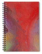 Annie S Eyes Spiral Notebook