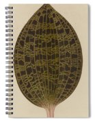 Anoectochilus Lowii  Spiral Notebook