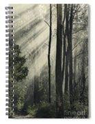 Anothen Spiral Notebook