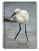 Another Catch Spiral Notebook