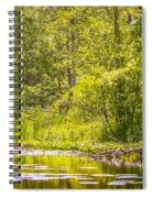 Another Day At The Lake Spiral Notebook