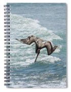 Another Dive Spiral Notebook