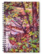 Another Look At Five Mile Mountain Spiral Notebook