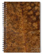 Another Touch Of Fall Spiral Notebook