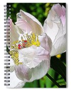 Ant On Peony Spiral Notebook