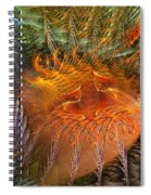 Antecedent To The Emergence Spiral Notebook