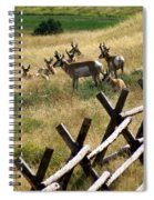 Antelope 2 Spiral Notebook